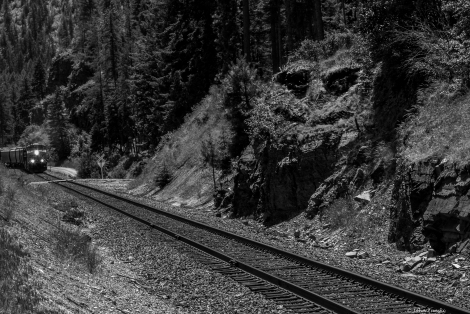 What Train